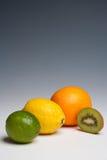 Cal anaranjada del limón de los agrios foto de archivo libre de regalías
