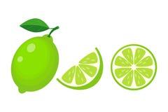 Cal colorida del conjunto, de la mitad y de la rebanada con la hoja verde Illu del vector libre illustration