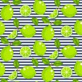 Cal con las hojas del verde en fondo rayado Modelo inconsútil del vector de la fruta cítrica ilustración del vector