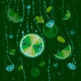 Cal, cubos de hielo y hojas de menta en un fondo verde Mojito brillante del fondo de la fruta cítrica de las cales libre illustration