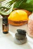 Cal do limão em pedras equilibradas do zen de sal Himalaia cor-de-rosa de madeira das ervas das plantas verdes de garrafa do óleo imagens de stock royalty free