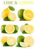 Cal e limão verdes ajustados no fundo branco imagens de stock