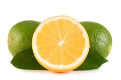 Cal e limão verdes no fundo branco imagens de stock royalty free