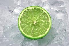 Cal en el hielo Imagen de archivo libre de regalías