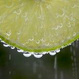 Cal en las burbujas Fotografía de archivo libre de regalías