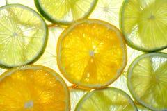 Cal, limão e laranja Foto de Stock