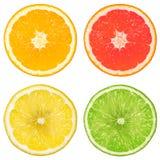 Cal, naranja, pomelo y limón Imagenes de archivo