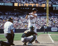 Cal Ripken makes contact on a pitch. Baltimore Orioles legend Cal Ripken swings at a pitch. (Image taken from color negative Stock Photography