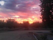 Nor cal słońca set Zdjęcia Royalty Free