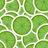 Cal verde ilustración del vector