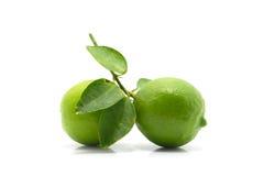 Cal verde com a folha isolada no fundo branco Imagens de Stock Royalty Free