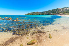 Cala Battistoni beach Royalty Free Stock Images