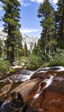 Cala colorida en las sierras del este, Whitney Portal, California imagenes de archivo
