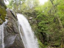 Cala con los árboles y la cascada Foto de archivo
