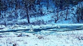 Cala congelada Imagen de archivo