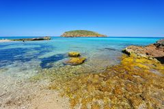 cala contaibiza spain Royaltyfria Foton