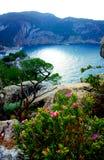 Cala Dalbarque i den Ibiza vintern med havsikt Fotografering för Bildbyråer