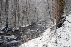 Cala de Gunter en nieve del resorte imagenes de archivo