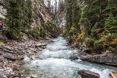 Cala de Johnston Canyon Imágenes de archivo libres de regalías
