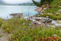 Cala de la montaña Fotos de archivo libres de regalías
