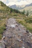 Cala de la montaña imagen de archivo