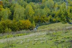 Cala de la montaña Imagen de archivo libre de regalías