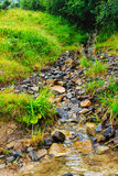 Cala de la montaña cárpata que fluye sobre las rocas imagen de archivo libre de regalías