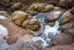 Cala de la montaña, corriente, primavera en el bosque, rocas grandes del bosque Fotos de archivo