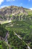 Cala de la montaña en el parque nacional de Tatra Foto de archivo libre de regalías