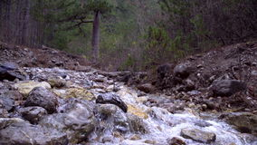 Cala de la montaña en otoño almacen de video