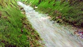 Cala de la montaña Riegue el río del arroyo de la corriente que fluye en parque verde en verano Agua corriente Pequeña cascada de metrajes