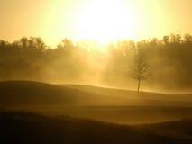 Cala de la ripia en el amanecer Fotos de archivo