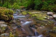 Cala de Necarney Foto de archivo libre de regalías