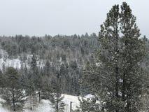 Cala del lisiado en invierno foto de archivo libre de regalías