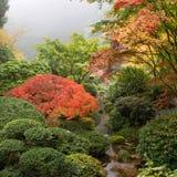 Cala en el jardín japonés en la caída Foto de archivo