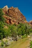 Cala en el parque nacional de Zion, Utah Fotografía de archivo