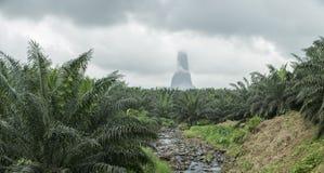 Cala en la isla tropical de Sao Tome fotos de archivo