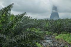 Cala en la isla tropical de Sao Tome foto de archivo libre de regalías