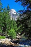 Cala en Rocky Mountain Imágenes de archivo libres de regalías