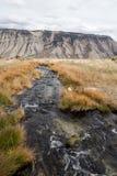 Cala en Yellowstone Imagen de archivo