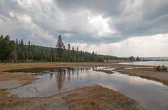 Cala enredada que vacia en las aguas termales calientes del lago en el lavabo más bajo del géiser en el parque nacional de Yellow Imágenes de archivo libres de regalías