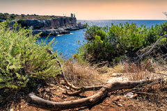 Cala Figuera, Majorca Stockbilder