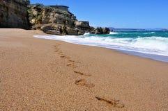 Cala Illa Roja beach in the Costa Brava, in Catalonia, Spain Stock Photo