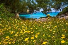 Cala Macarella Menorca turkoois Baleaars Middellandse-Zeegebied stock afbeeldingen