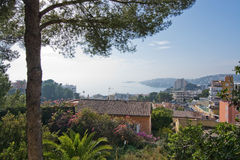 Cala Mayor ocean view with pine tree Royalty Free Stock Photos