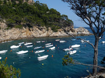 Cala pola. Boats anchored in Cala Pola, Costa Brava (Girona, Spain Royalty Free Stock Photo