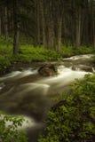 Cala que fluye en Montana Imagenes de archivo