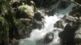 Cala que fluye sobre rocas metrajes