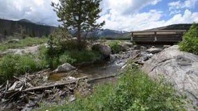 Cala que fluye y pequeño puente cerca de Sprague Lake almacen de metraje de vídeo