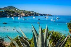 Cala Tarida в пляже Сан-Хосе Ibiza на Балеарских островах стоковое изображение